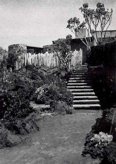 Vista desde el jardin, Casa Cetto, calle del Agua 130, Jardines del Pedregal, México DF 1949  Arq. Max Cetto -  Garden view of the home of Max Cetto, Gardens of Pedregal, Mexico City 1949 #jardín
