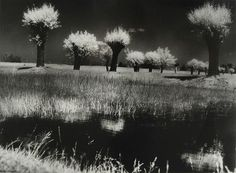 Masovian landscape: vicinity of Żelazowa Wola (birthplace of Fryderyk Chopin), Poland, 1972 - by Edward Hartwig (1909 - 2003), Polish