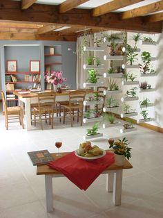 le rideau végétal, mur végétal