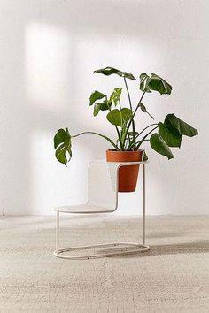 Modern Plant Stand, Diy Plant Stand, Plant Stands, Home Furniture, Furniture Design, Furniture Cleaning, Outdoor Furniture, Furniture Stores, Luxury Furniture