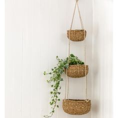 Sea Grass Tiered Hanging Baskets