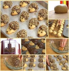 Hedgehog Biscuits - for the biscuit it's just flour, butter, powdered sugar and 1 egg yolk and for the decoration it's just melted chocolate and toasted chopped nuts (or shredded coconut if preferred). These next sweets are called Hedgehog Biscuits, and t Cookies Et Biscuits, Cake Cookies, Shortbread Cookies, Cute Food, Yummy Food, Hedgehog Cookies, Cookie Recipes, Dessert Recipes, Cupcakes