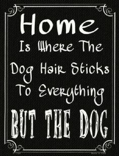 Home is Where the Dog hair Sticks to Everything But the Dog Metal Parking Sign.