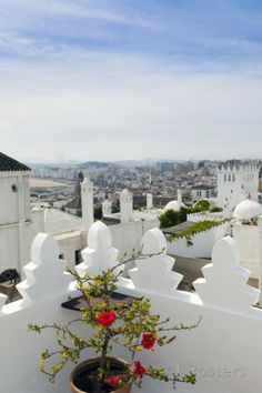 The Medina, Tangier, Morocco  • @HVLAUREN