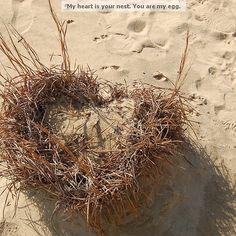 Nesting Heart  http://www.redbubble.com/people/memomuse/works/9962005-nesting-heart