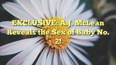 EXCLUSIVE: A.J. McLean Reveals the Sex of Baby No. 2! - https://twitter.com/pdoors/status/800336361030987777