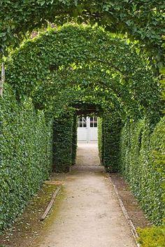 Dream Garden, Home And Garden, Covered Walkway, Garden Floor, Arch Bridge, Pebble Mosaic, Topiary, Fencing, Permaculture