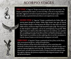 Evolution: From Scorpion to Phoenix The Three Stages of the Scorpio Z., Scorpio Evolution: From Scorpion to Phoenix The Three Stages of the Scorpio Z., Scorpio Evolution: From Scorpion to Phoenix The Three Stages of the Scorpio Z. Astrology Scorpio, Scorpio Zodiac Facts, Scorpio Traits, Scorpio Quotes, My Zodiac Sign, Scorpio Sign Tattoos, Libra Scorpio Cusp, Gemini Compatibility, Astrology Chart