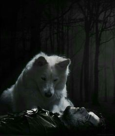 Ghost and Jon Snow - The Red Woman Season 6 Episode 1