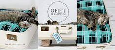 DU VINTAGE POUR NOS ANIMAUX Voilà un objet de déco vintage qui servira de lit à votre animal de compagnie. Plus d'infos : http://pau-et-ju.blogspot.fr/