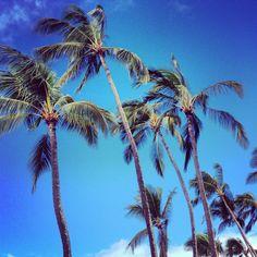 North shore Oahu Hawaii @John Doerr