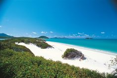 The sand on Whitehaven Beach is made of 98% pure silica and was mined and exported heavily during the '60s to make high-precision glass for telescopes and camera lenses. The origins of the ultra-fine sand is still a mystery, but has earned Whitehaven a ranking as one of the world's top five beaches.