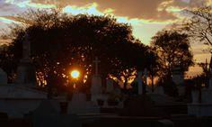 https://flic.kr/p/CfTg2z | cemiterio 60