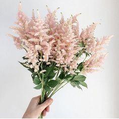 pretty bundle of blush blooms