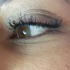 Gorgeous set of Classic X-Wrap lashes done at Head Office. 😍😍😍 Type: Faux Mink X-Wrap Curve: X40 & X50 Thickness: 0.20 Length: 11mm – 14mm  Click on the link to find an Xtreme Lashes Stylist near you.  #XtremeLashes #XtremeLashesSA #Lashextensions #Eyes #Beauty Eyelash Extensions, Mink, Eyelashes, Stylists, Eyes, Classic, Beauty, Lashes, Derby