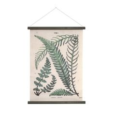 Beautiful botanical school chart made of printed cotton. The fern print makes for a stylish wall display either as part of a collection or on it's own. Ferm wal