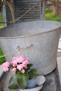 I love planting in old metal buckets and basins!