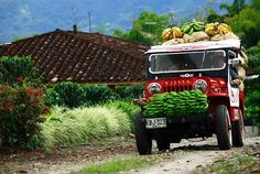 The Colombian Coffee Zone, Caribbean and the Andes Mountains, all in a 12 days tour. Colombia Country, Colombia South America, Latin America, Visit Colombia, Colombia Travel, South America Destinations, Travel Destinations, Colombian Culture, Colombian Coffee
