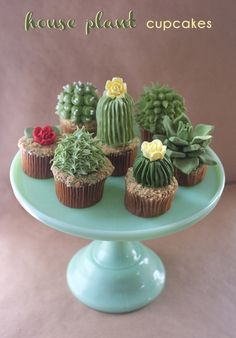 House plant cupcakes