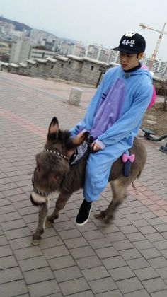 Jackson and his donkey