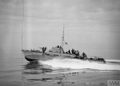 MTB 378 at speed and ready for action. They're hitting the enemy off genoa. February 1945, leghorn, Italy. The small force of British MTBs which with American patrol boats, have turned the 45 mile stretch of enemy held coast between Spezia and genoa into their hunting ground. ~ BFD