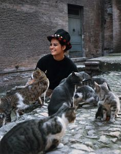 Claudia Cardinale and cats, famous cat lovers Claudia Cardinale, Crazy Cat Lady, Crazy Cats, I Love Cats, Cool Cats, Patricia Highsmith, Celebrities With Cats, Celebs, Son Chat