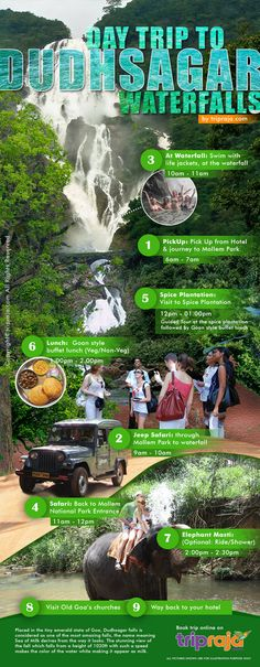 Placed in the tiny emerald state of Goa, Dudhsagar falls is considered as one of the most amazing falls, the name meaning Sea of Milk derives from the way it looks. Goa Travel, Travel Destinations, Travel Tours, Travel Guides, Where Is Bora Bora, One Day Tour, World Travel Guide, Tourist Places, Travel Activities