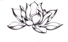 Black and White Lotus Flower Tattoo | amazing lotus flower tattoo pictures (pics), photos and wallpapers