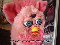 Furby on the phone