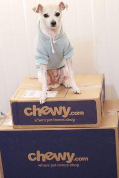 #ChewyBoxLove