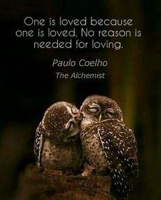 Love. No reason's needed
