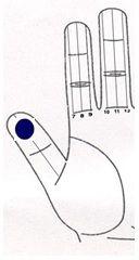 Espinillas y para dar brillo a la piel acne puntos sujok 2 Magnetoterapia Imán de barra (clavo lateral) Línea Nº 3 - Amarillo La terapia del color Yin lado del pulgar de color azul oscuro en la zona comprendida entre la punta y articulación distal. El consumo de alimentos picantes, junto con sentimientos de más de emoción en los niveles físicos o mentales, incluso sexuales que pueden agravar.