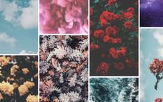 10 Happy iPhone 7 Wallpapers to Celebrate Life | Preppy Wallpapers