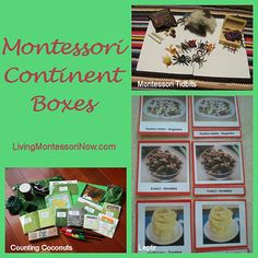 Montessori Continent Boxes, really want to try to put together something similar for my 3 yr. old class!