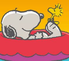 Snoopy and Woodstock Relaxing in Red Inner Tube