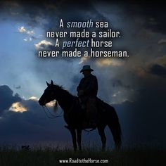 Although I totally agree... there is no perfect horse, even the best ones present challenges and I think you should always choose a horse that is at your level, and you can handle or worse you may end up very hurt like I did. Don't feel any less for going with the old school horse, he still has things to teach you.