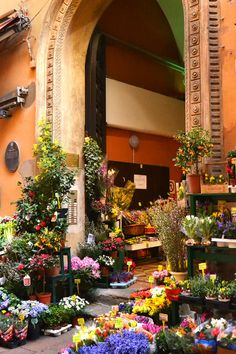 bologna market - Bologna, Italy #Cersaie2014