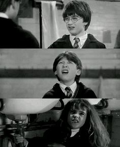 Harry Potter, Ron Weasley and Hermione Granger.