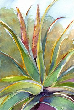 Aloe Speciosa, Limited Edition Giclee Print of an Original Watercolor Painting. Watercolor Plants, Watercolor Paper, Watercolor Paintings, Original Paintings, Watercolors, Cool Art, Nice Art, Large Prints, Giclee Print