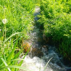 A gorgeous stream crossing the Rio Grande bike trail that runs the length of the Roaring Fork Valley #rfv #biking #riogrande #snowmass #aspen #colorado #mountainbike #roadbike #river #stream