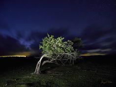 https://flic.kr/p/xgDRVQ | 20150818 Cambio de planes_634 | La nubosidad aumentaba en cada toma, volveremos a por una noche solo con estrellas. Iluminada con Mini Maglite AA.