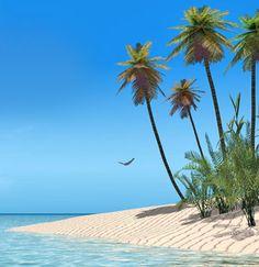 Key West, FL...hurry up, May! senior trip!