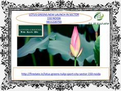 Lotus greens 9811220750 new launch projects in sector 150 noida by Rajesh Kumar via slideshare
