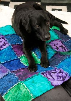 ooooh I love these colors..Maybe my dog needs one? will have to find someone to do the cutting?