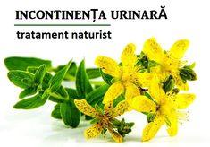 INCONTINENȚA urinară – cauze, simptome, tratament naturist Health Tips, Healing, Herbs, Plants, Medicine, Herb, Planters, Therapy, Recovery
