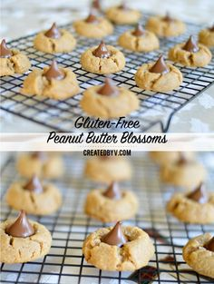 Topped with a Hershey's Kiss, it's really all about the peanut butter cookie... this recipe bakes a gluten-free cookie packed with a deliciously rich peanut butter flavor.