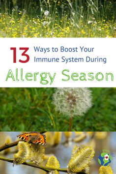 Allergy Remedies Boost your immune system and treat seasonal allergies naturally. Good Health Tips, Health And Fitness Tips, Health Advice, Healthy Tips, Healthy Food, Allergy Remedies, Health Remedies, Natural Cures, Natural Health