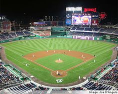 Washington Nationals Stadium to catch a night game, when the cherry trees are in bloom