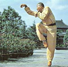Стиль обезьяны Shaolin Kung Fu, Tai Chi, Karate, Marshal Arts, Art Of Fighting, Chinese Martial Arts, Character Poses, Martial Artists, Art Poses