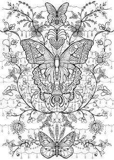 Butterfly coloring page : kolorowanka motyle